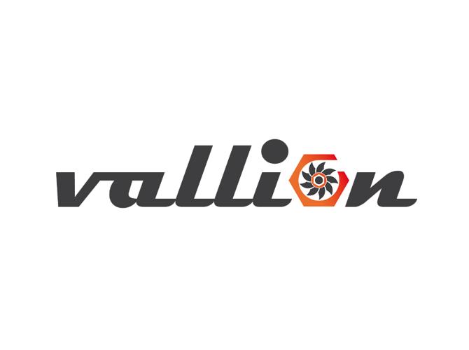 ООО «Валлион» — Российская Федерация